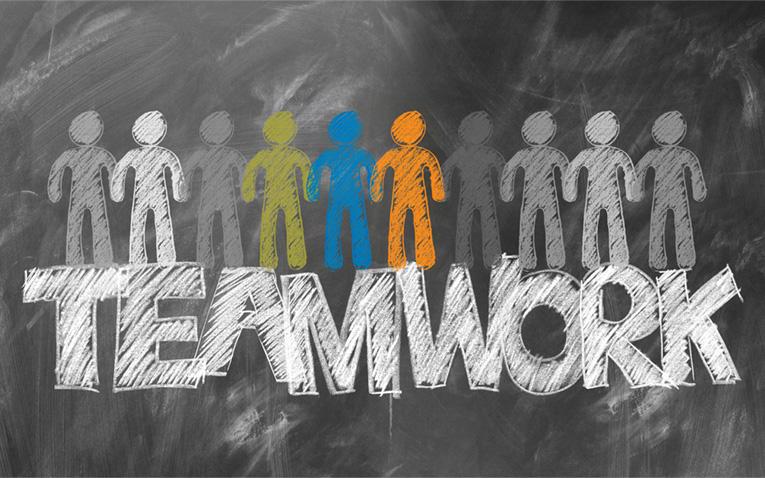 Teamwork oder Einzelkämpfer?